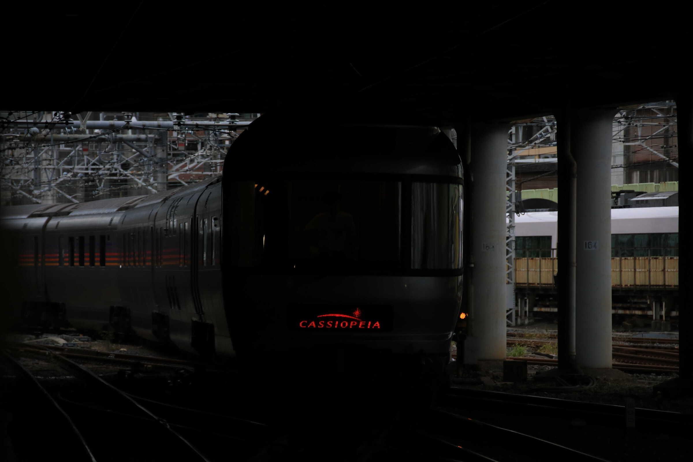 回9052列車 団臨 カシオペア紀行送り込み E26系 東オク車12両+EF81-95①[田]
