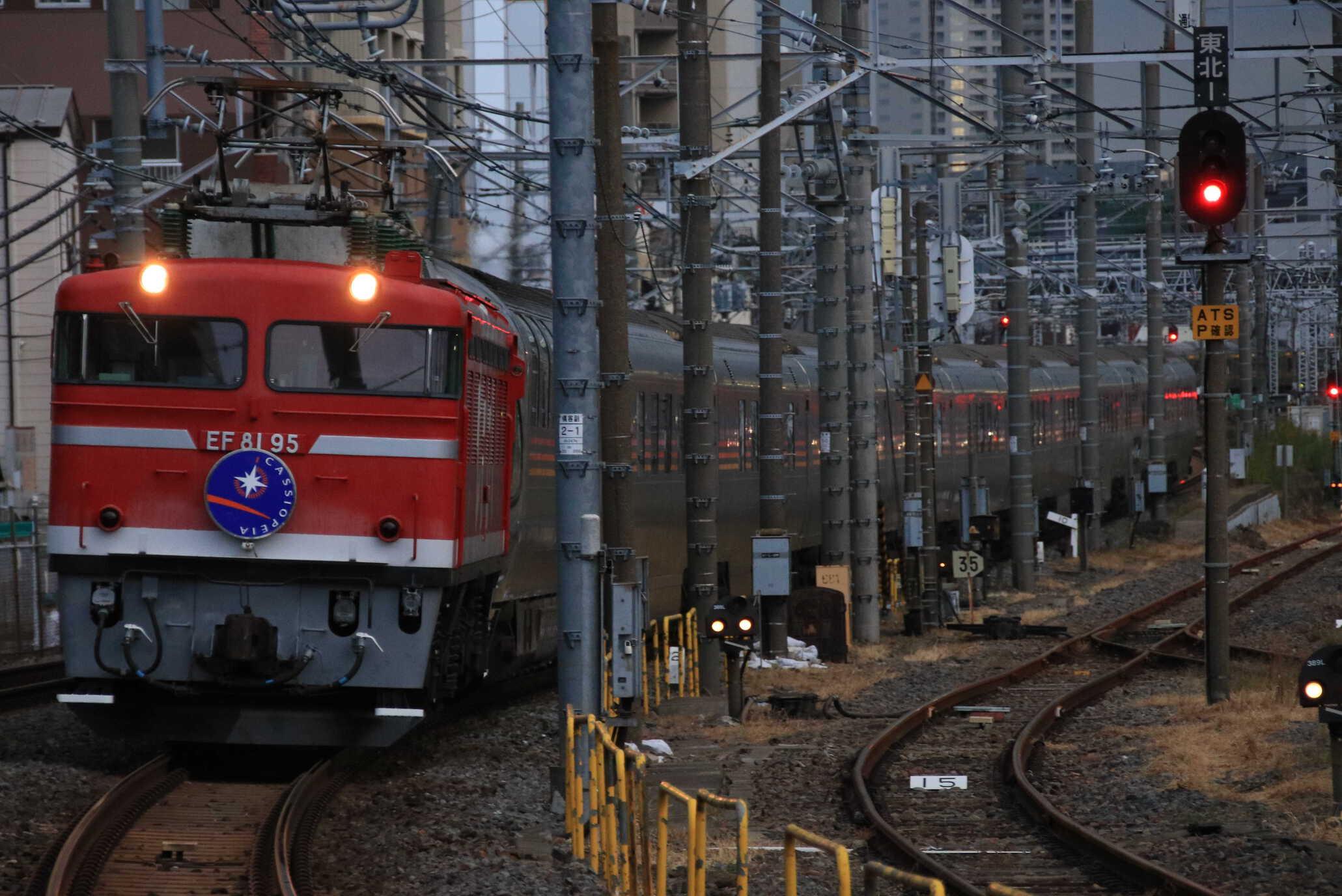 9011列車 団臨 カシオペア紀行 EF81-95②[田]+E26系 東オク車12両