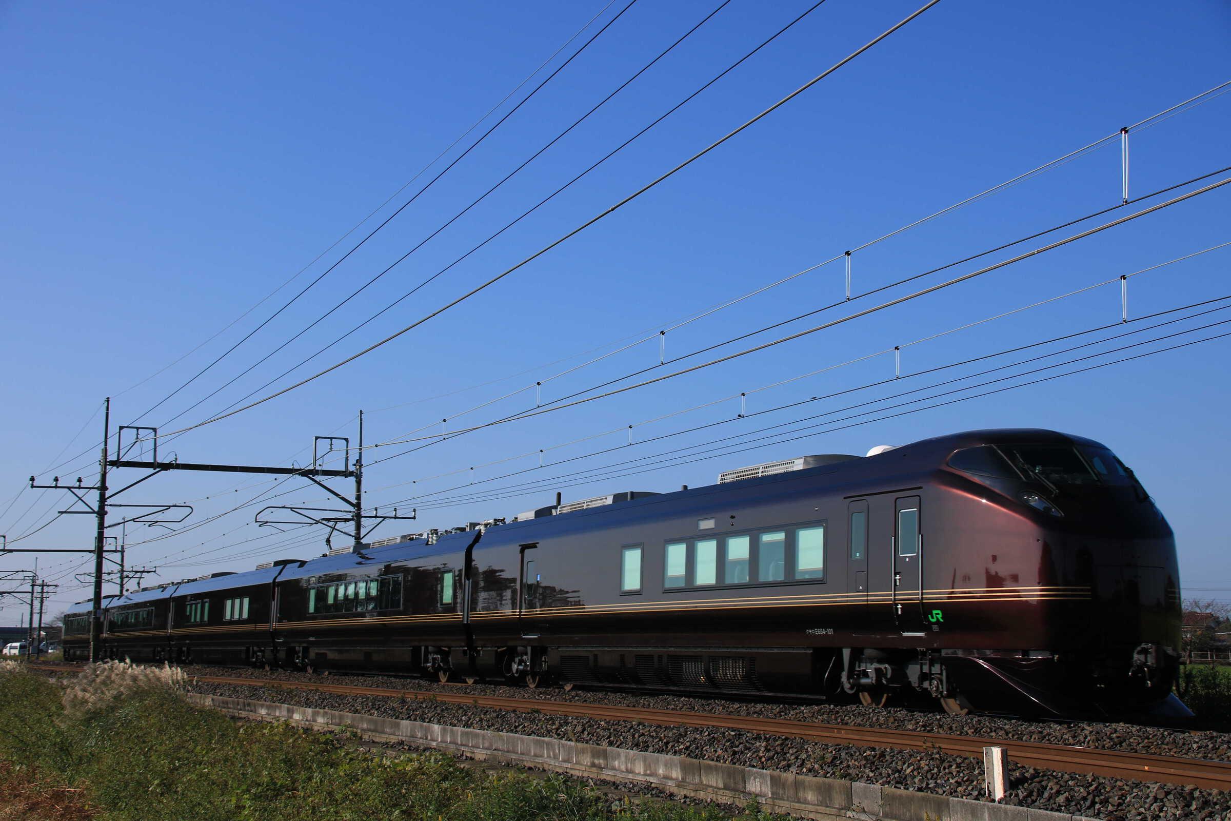 """9031M 団臨(東1121, 上野→会津若松) E655系 """"和"""" 東オク車5両"""