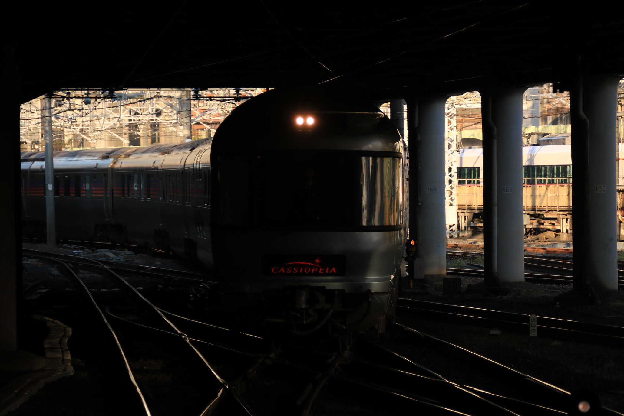 回9052列車 団臨 カシオペア紀行 送り込み推進回送 E26系12B+EF81-98