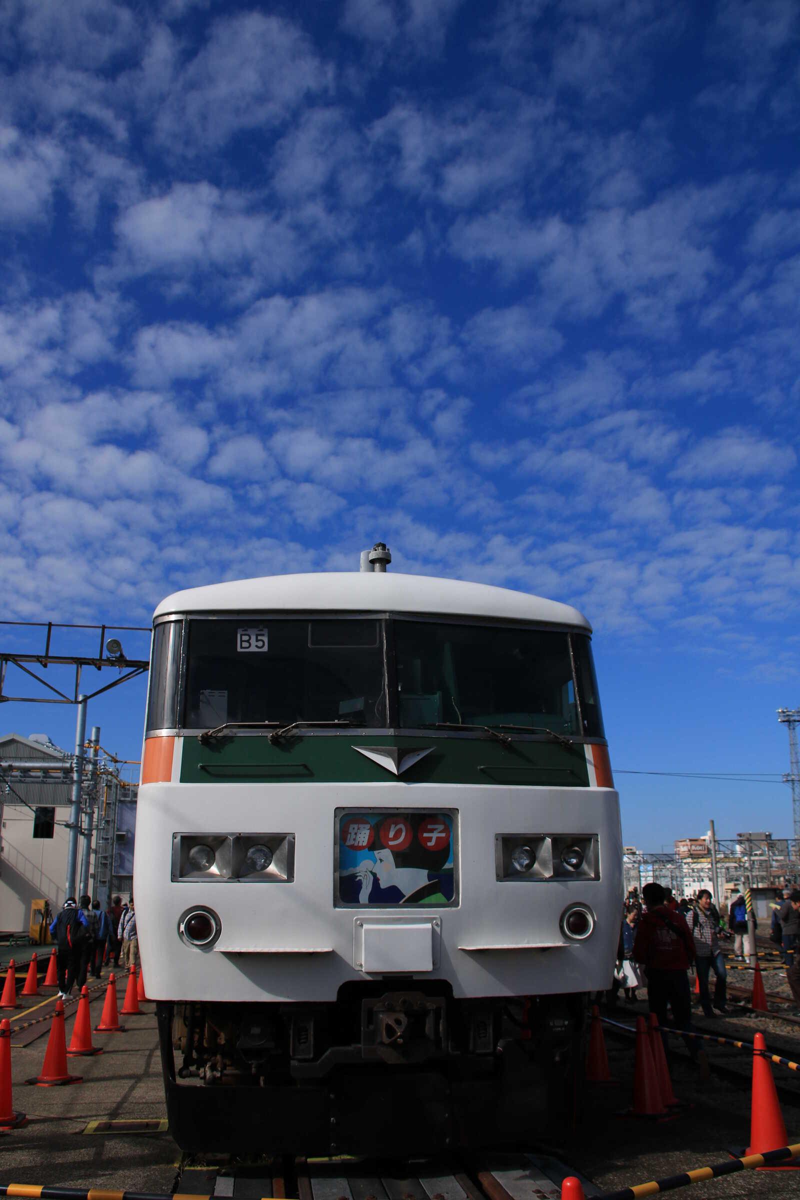 185系 宮オオB5+C7(オール湘南ブロック)