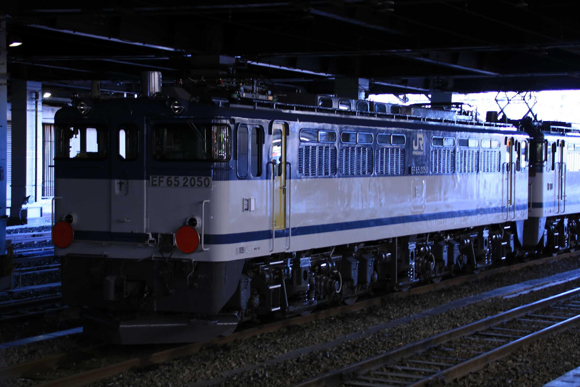 単8253列車(種別変更 : 貨物列車, 専貨A) OM出場 EF65-2090①[新]<臨A991>+EF65-2050②[新]