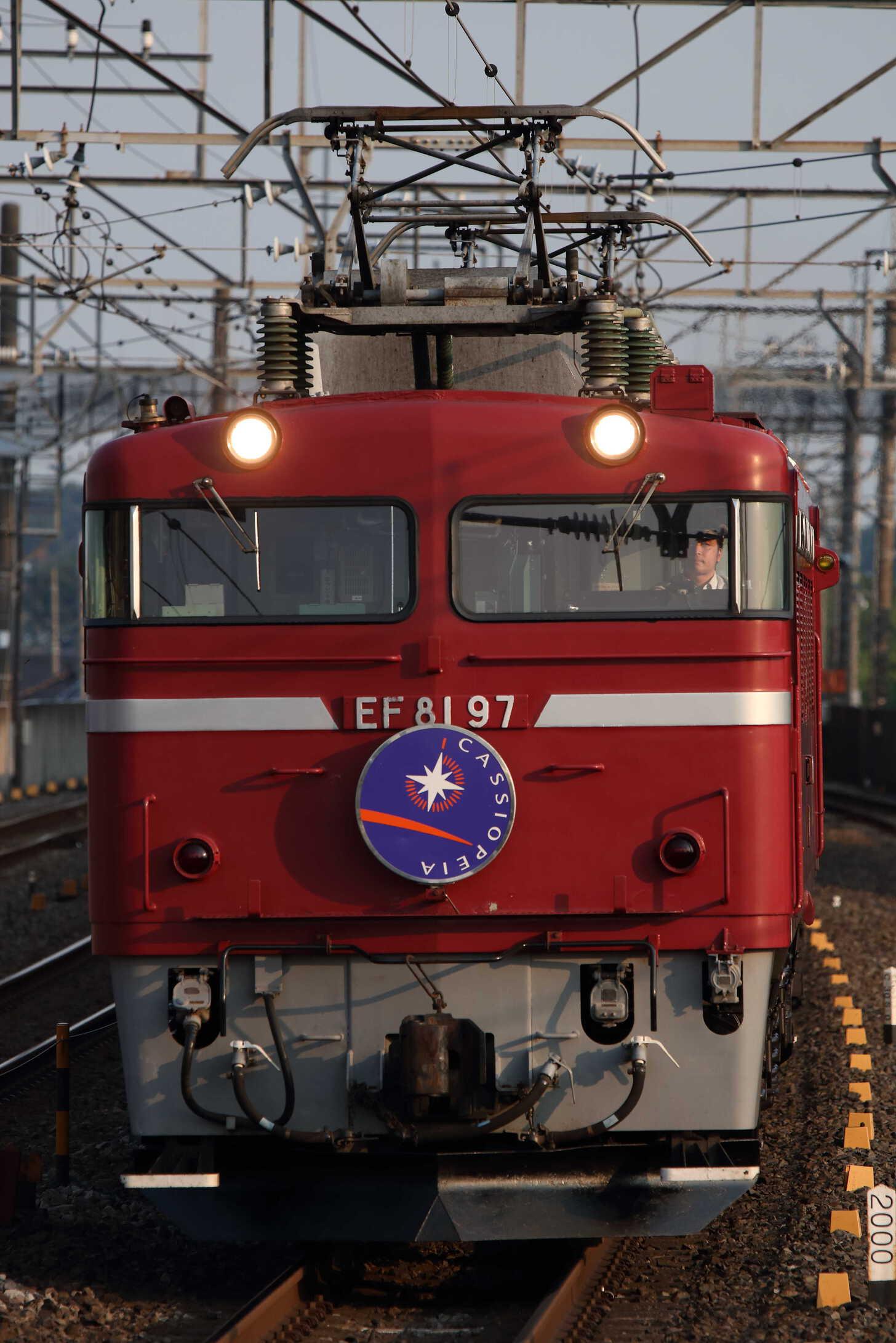 9011列車 団臨 カシオペア紀行 EF81-97②[田]+E26系 東オク車12両